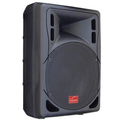 Solton acoustic E-12 B