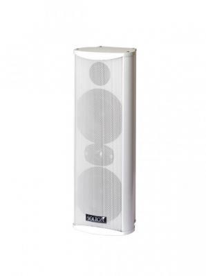Solton acoustic IP 4/2 W