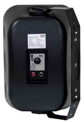 SVS Audiotechnik WSP-80 Black