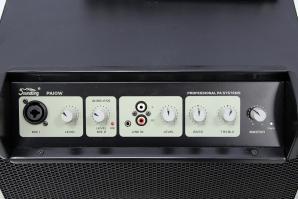Soundking PA10W
