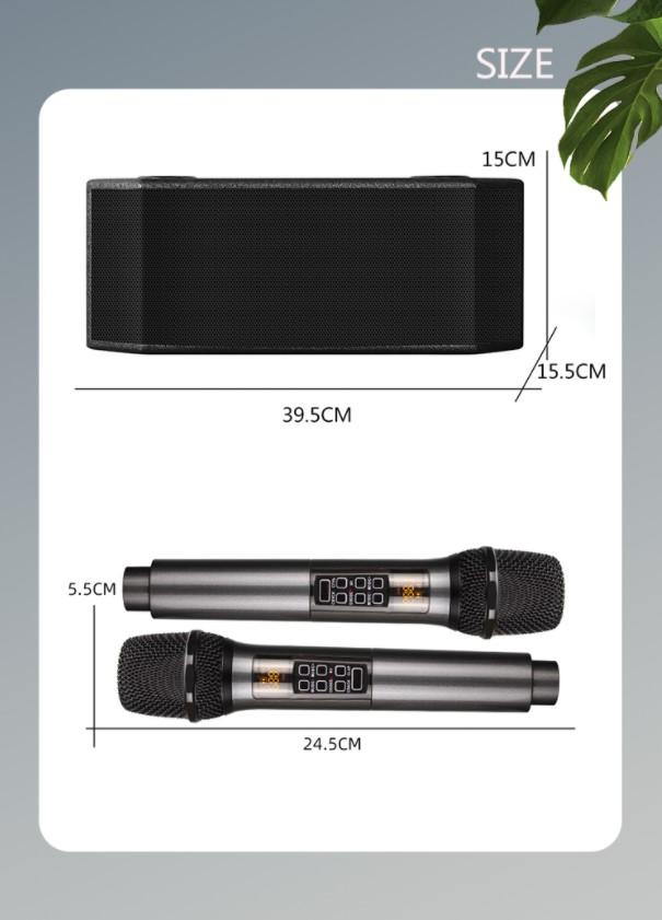 Размеры караоке колонки G6
