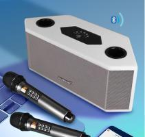 G6 Karaoke Speaker